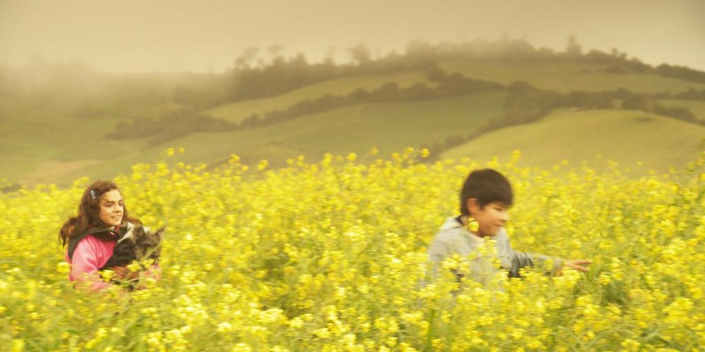 "Columbian director Juan Carlos Melo Guevara's ""Field of Amapolas"" (Jardín de Amapolas) addresses the impact of Columbia's ongoing struggle with corruption through the story of two innocent children."